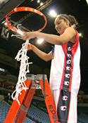 cutting down net